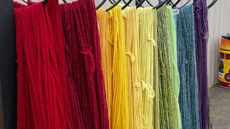 Skeins dry in the sun at Fiber College